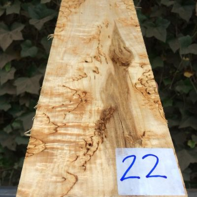 Curly Karelian / Masur Birch 12.5x4.5x2.25 inches