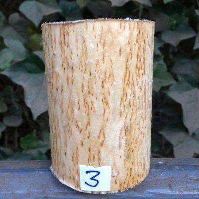 Curly Karelian / Masur Birch 4 long x 3 inch diameter