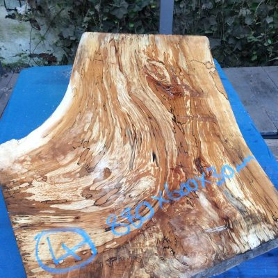 Spalted Beech 880x600x30mm