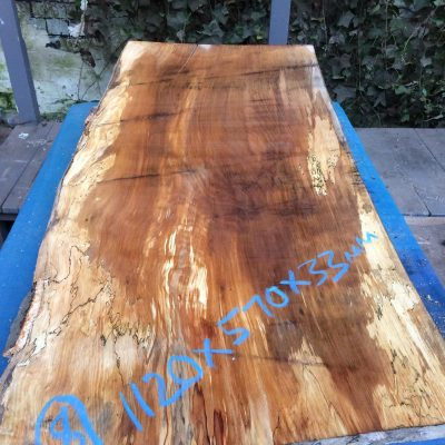 Spalted Beech 1120x570x33mm