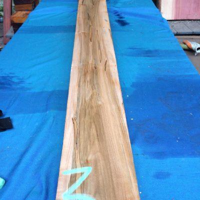 Ambrosia Maple 72x5.5x1.75 inches