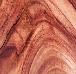 NAMIBIAN ROSEWOOD (long lumber)