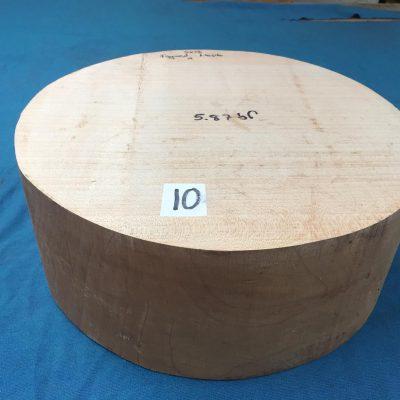 Maple A Grade 13x5 inches