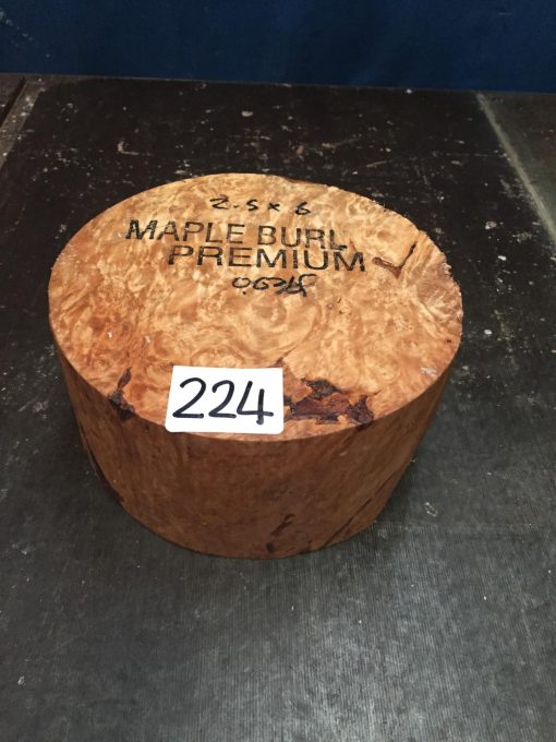 Maple Burr (Premium) 6x2.5 inches