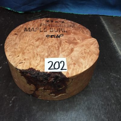 Maple Burr (Premium) 7x2.5 inches