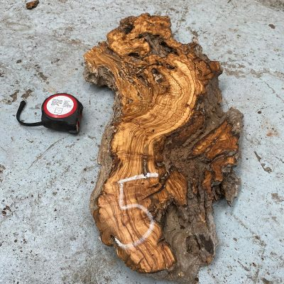 Olivewood Root Burl 24x10x2 inches
