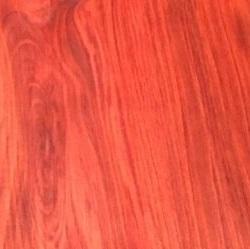 CHAKTE KOK (redheart)