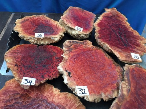 Red Mallee Burl 16x8x2.75 inches