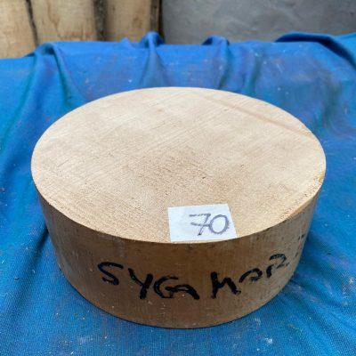 Sycamore 8x3 inches
