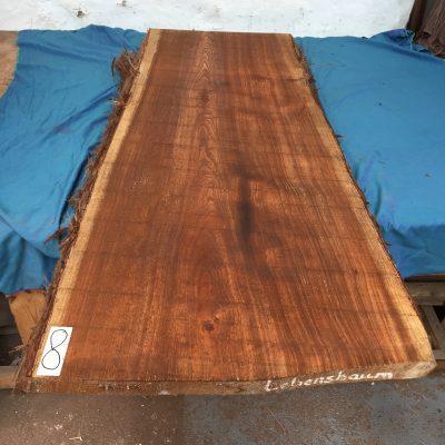 Western Red Cedar 1330x600x50 mm